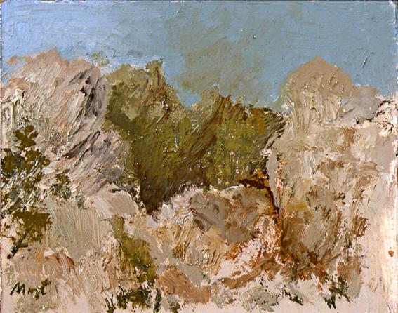 Paisaje-017-2005
