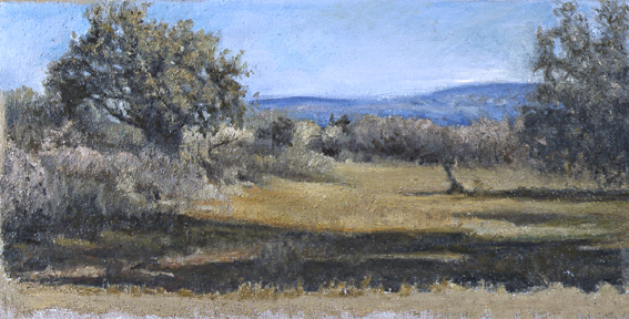 Paisaje-024-2005