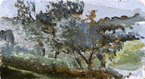 Paisaje-025-2005