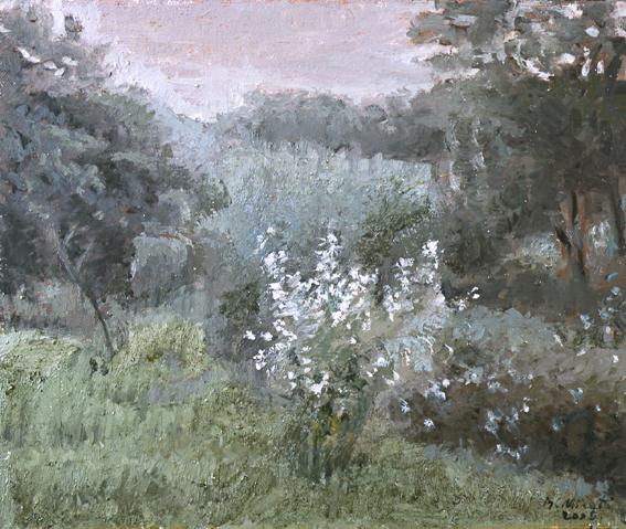 Paisaje-028-2005