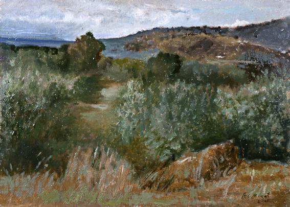 Paisaje-030-2005